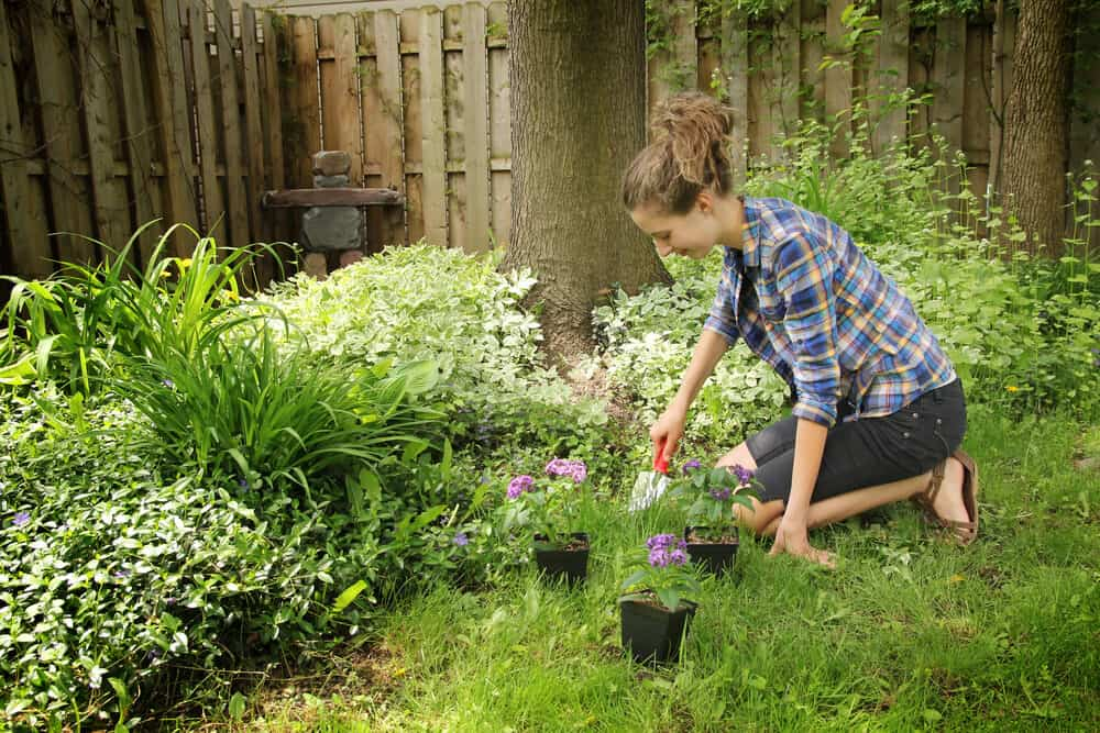 Gardening - Self Care - meadowglade